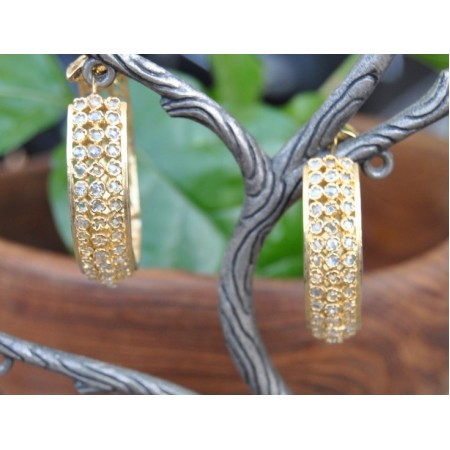 Crystal Studded Gold Hoop Earrings